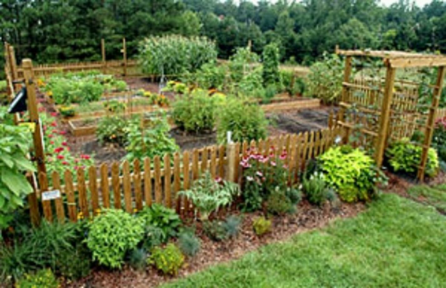 Stunning vegetable garden fence ideas (1) - ROUNDECOR