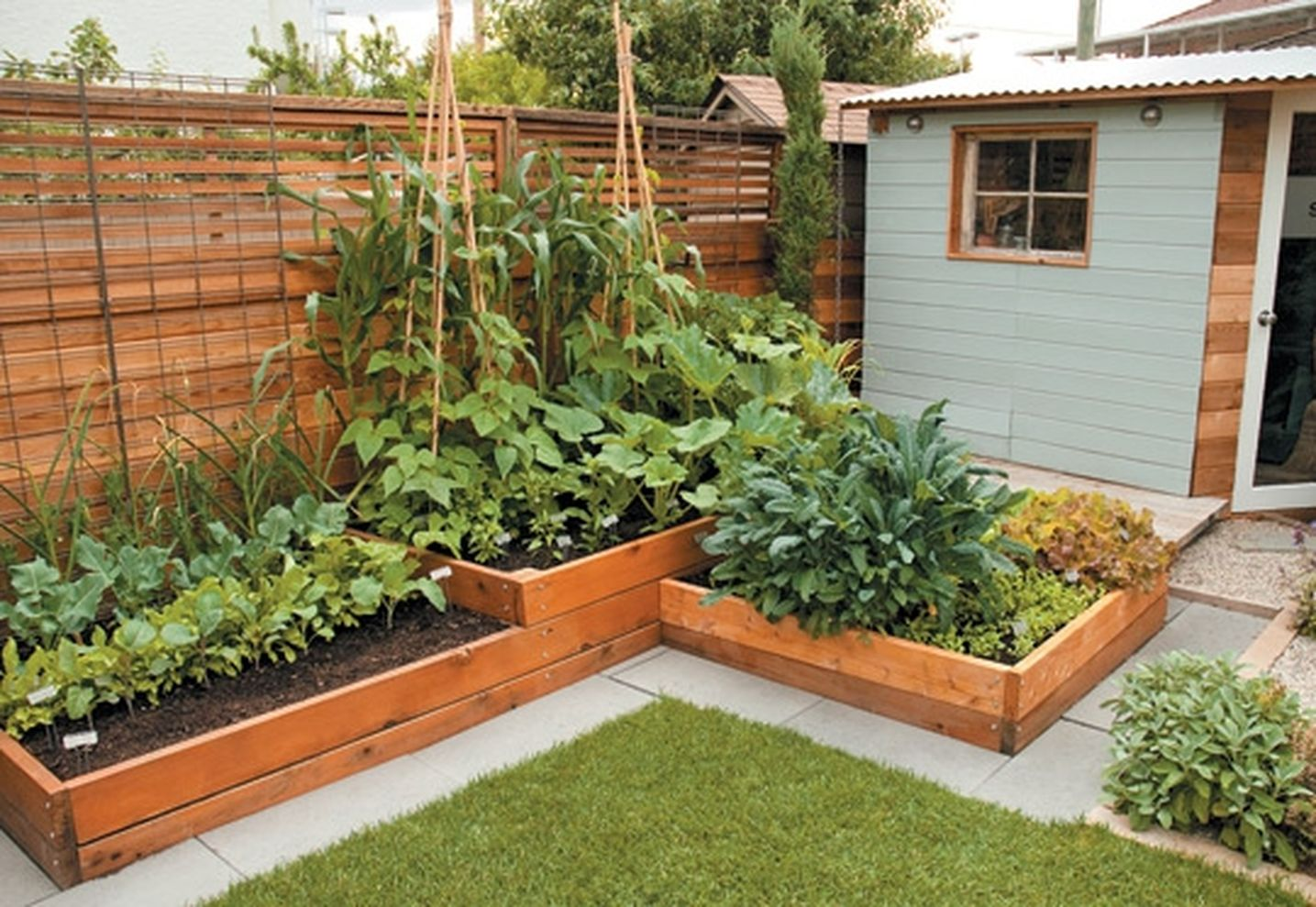 Backyard Vegetable Garden Design ... 1435 × 989 in 62 Affordable Backyard Vegetable Garden Designs Ideas