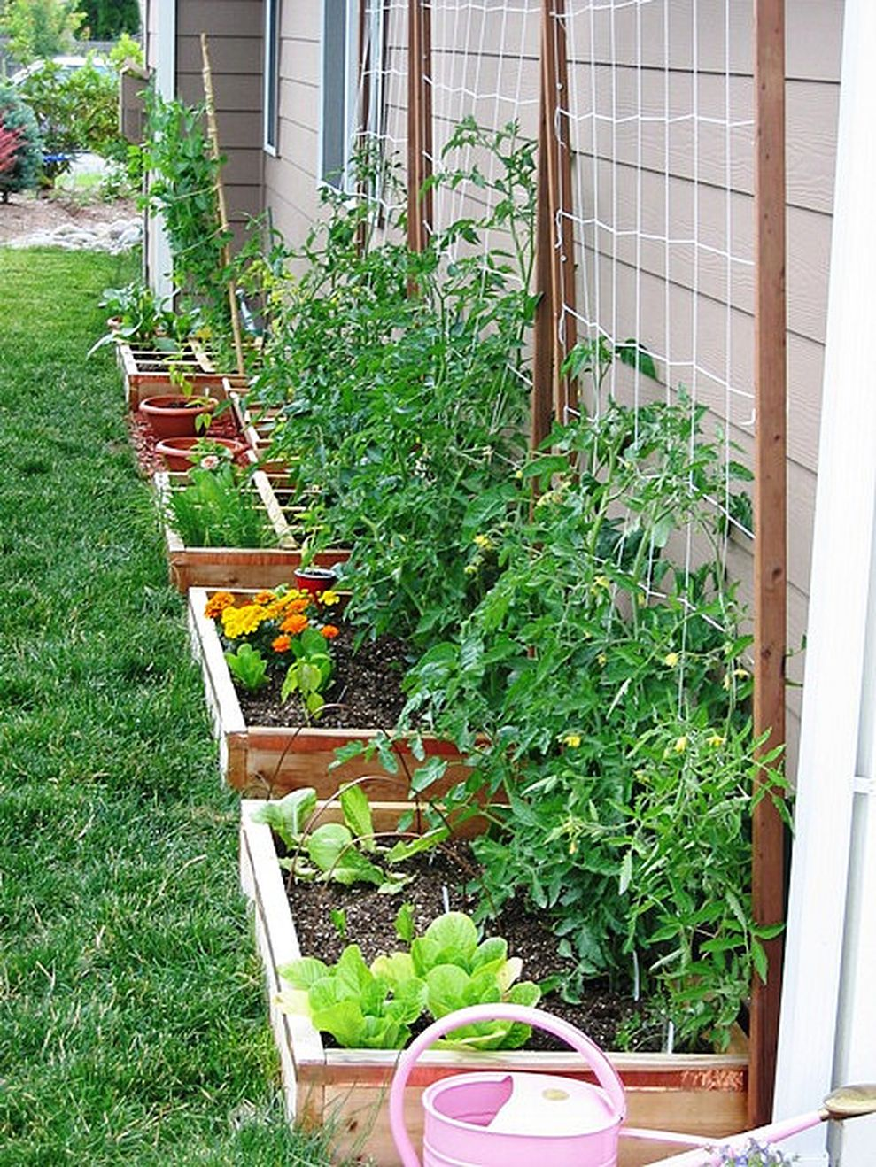 Affordable backyard vegetable garden designs ideas 35 ... on Backyard Garden Design id=24560