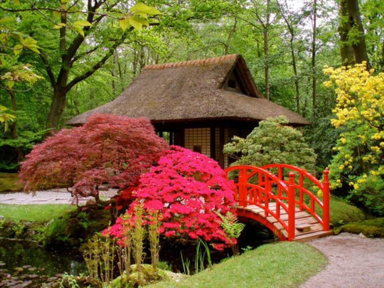 80 stunning japanese garden ideas plants you will love for Japanese outdoor plants