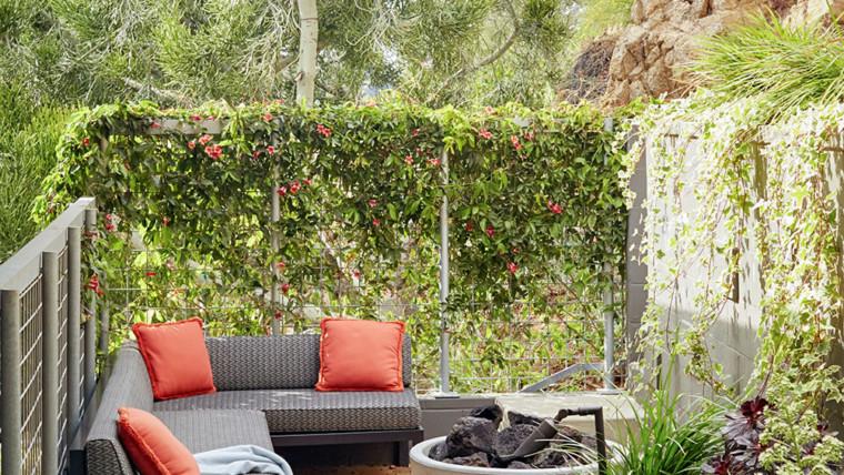 Backyard-patio-lounge-area-c7a2f900